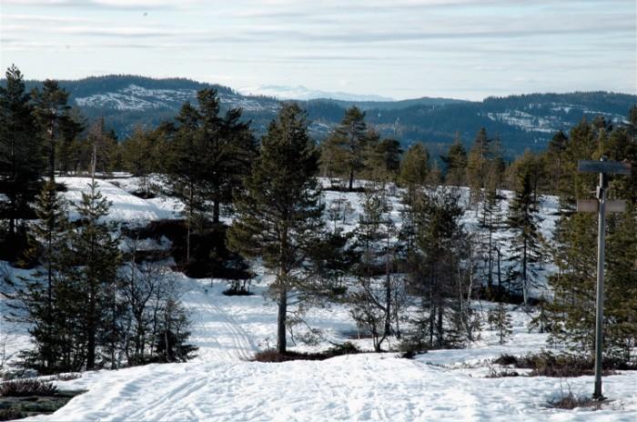 Fra Skimten mot Eikstra ser du Norefjell over skogen.