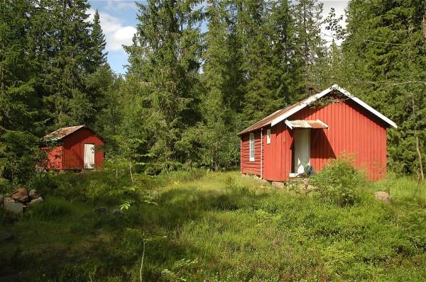 Lunaas-hytta ligger idyllisk til i skogen ved Vesle Bumla