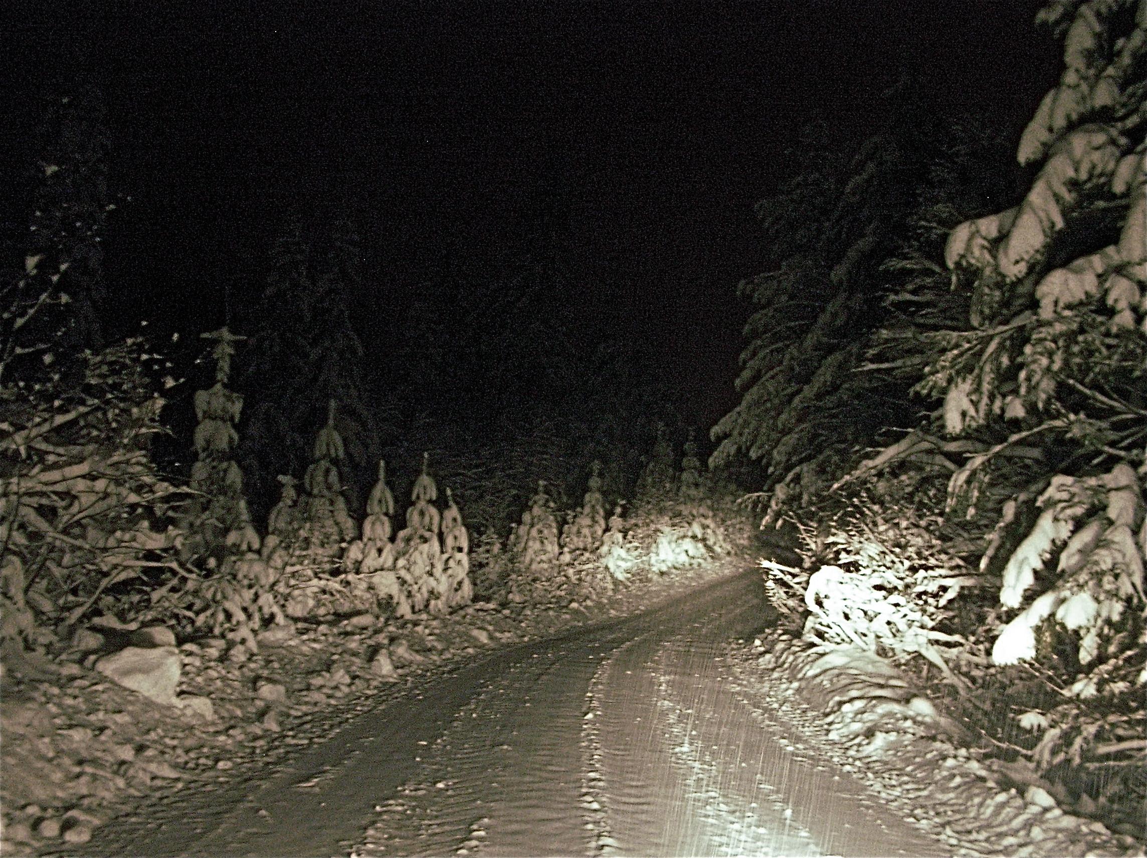 Eikseterveien var dekket av kritthvit snø