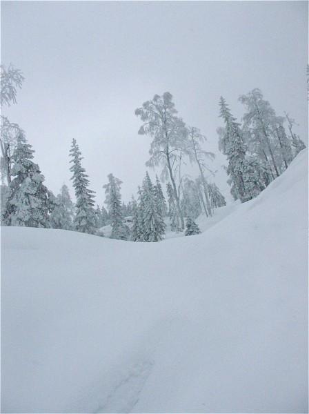 Så da la jeg i vei oppover de bratte, snødekte bakkene mot Trettekollen...