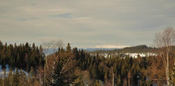 Utsikt vest fra Dypingkolløypa