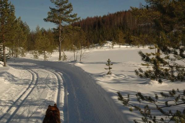Løypa går rundt Åsvanna