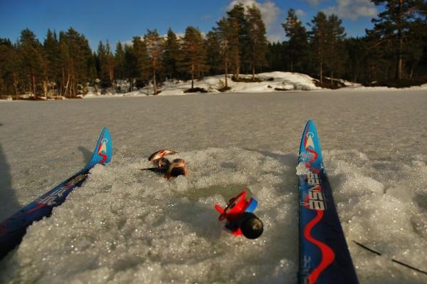 Under isen på Svarttjern ventet vintersultne tusenbrødre..