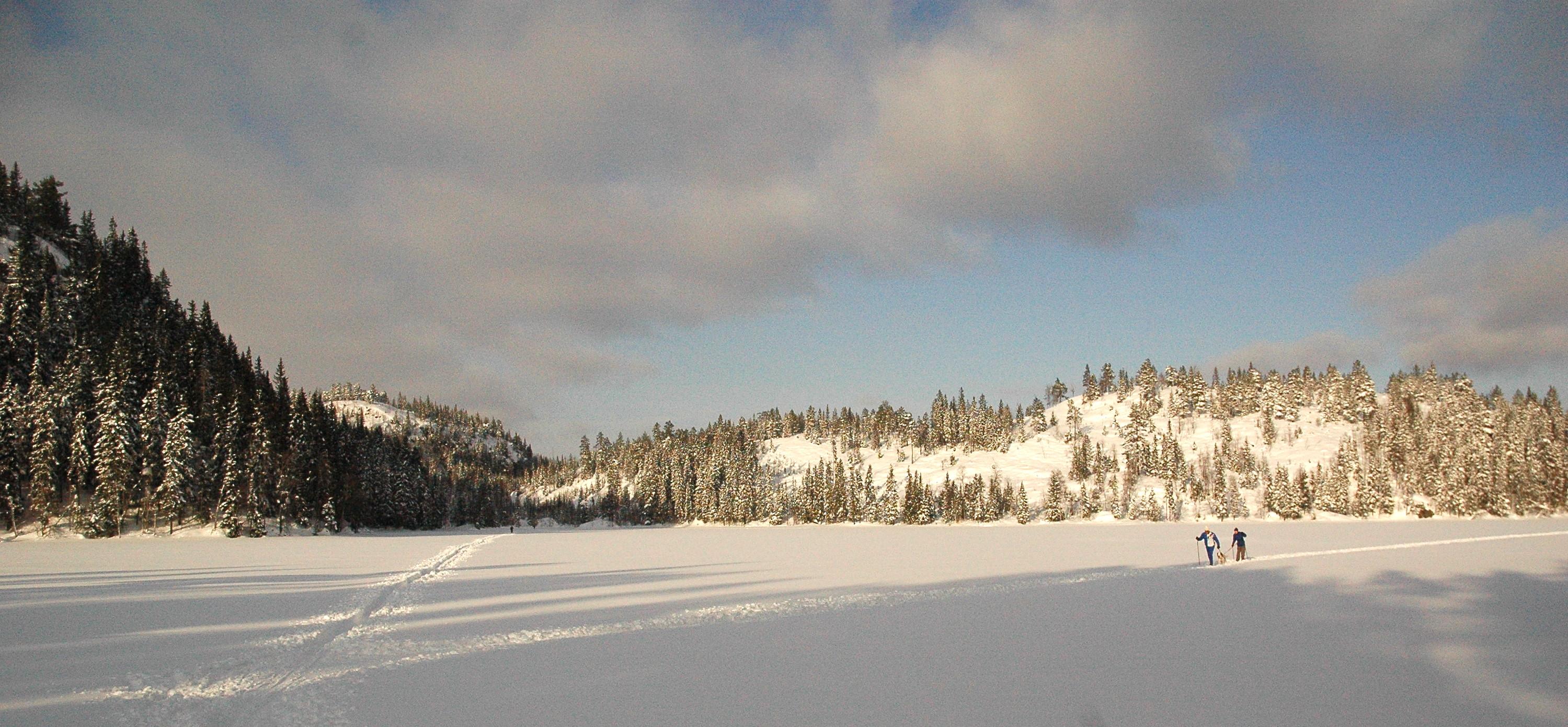 Snøabstinenser